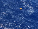 Giải mã bí ẩn máy bay rơi của EgyptAir
