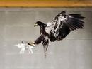 """Cảnh sát Hà Lan huấn luyện đại bàng để """"diệt"""" drone"""
