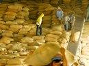 Trung Quốc kiểm soát ngặt gạo Việt Nam
