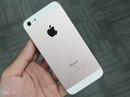 iPhone SE ruột iPhone 5 tràn ngập ở TP HCM