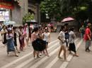 Giám sát hoạt động du lịch tại Khánh Hòa