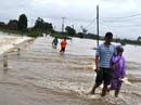 Thiệt hại nặng nề do mưa lũ