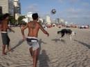 Kinh ngạc với clip chó chơi bóng đá, bóng chuyền