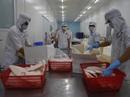 Giá cá tra xuất khẩu tăng vọt