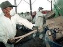 Formosa Plastics Group: Kẻ hủy diệt môi trường
