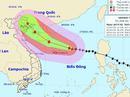 Hải Phòng, Quảng Ninh lo đối phó bão số 7