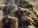 Triều Tiên có nguy cơ thiếu gần 700.000 tấn lương thực