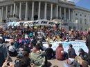 Mỹ: Hơn 400 người biểu tình bị bắt