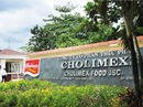 Cholimex đầu tư vào địa ốc