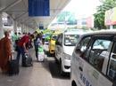 Tăng xe buýt vào sân bay Tân Sơn Nhất để giảm ùn tắc