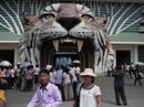 Đi sở thú ở Triều Tiên