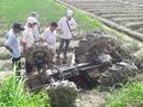 Máy cày nhào xuống ruộng, đè chết người cầm lái