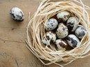 Lão nông thu chục tỉ từ trứng cút đóng lon xuất khẩu