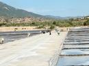 Đồng muối ô nhiễm, Sở GD-ĐT kêu cứu giùm cho học trò