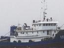 """Tàu Trung Quốc """"cướp"""" cá tận châu Phi"""