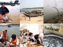 Bộ TNMT đang công bố hiện trạng biển miền Trung