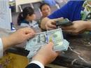 USD tự do rẻ hơn ngân hàng, vàng SJC đứng trên 37 triệu đồng/lượng