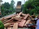 Bị công an áp giải, tài xế nâng ben đổ ập 20m3 gỗ lậu xuống đường