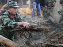 Trung Quốc: Động đất, 31 người thương vong