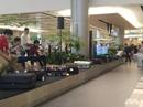 """Nhà ga """"độc"""" ở sân bay Singapore"""