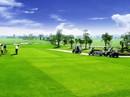 Quảng Ngãi xây học viện golf: Ý tưởng của doanh nghiệp