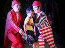 TP HCM: Điểm diễn mới cho nghệ sĩ xiếc và múa rối