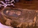 Vén màn xác ướp Ai Cập