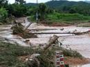 Phê bình Văn phòng Ban chỉ huy Phòng chống thiên tai Quảng Ninh