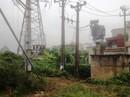 Bồi thường 210 triệu đồng cho gia đình người bị điện giật chết