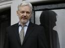 """Ông chủ WikiLeaks ra điều kiện """"mạng đổi mạng"""""""