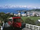 """Du lịch miễn phí đến New Zealand tìm """"việc tốt lương cao"""""""