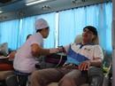 500 nhân viên tham gia hiến máu nhân đạo