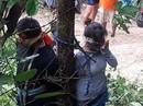 Bị trói vào cây, người phụ nữ bị kiến cắn chết