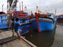 Bão cấp 12 đổ bộ vào Khánh Hòa - Ninh Thuận - Bình Thuận