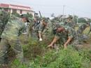Chủ tịch Đà Nẵng cảm ơn nhân dân dọn sạch môi trường trong 1 ngày đón APEC
