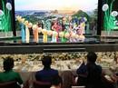 Những hình ảnh ấn tượng tại tiệc chiêu đãi các nhà lãnh đạo APEC