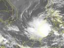 """Bão Tembin có thể mạnh hơn bão Linda, đổ bộ vào Nam Bộ với """"cấp thảm họa"""""""