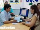 Gần 4,7 triệu lao động được bàn giao sổ BHXH