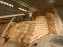 """""""Cởi trói"""" cho gạo xuất khẩu"""