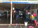 Sóng biển tàn phá ở Bạc Liêu