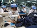Vinatex huy động hơn 5.000 tỉ đồng đầu tư vào sản xuất