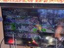 Tổng lực dẹp nạn móc túi ở đường hoa Nguyễn Huệ