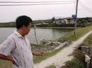 Quyết thu hồi dự án của Vinashin