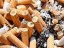 Chết người như chơi vì đầu lọc thuốc lá