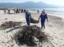 Đà Nẵng: Hơn 30 tấn rác tấp vào bãi biển gây ô nhiễm nặng