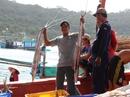 Thích thú đi cảng cá Thổ Chu sớm mai