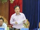 Kế toán Công ty Tây Trường Sơn làm giả quyết định lãnh đạo Quảng Nam