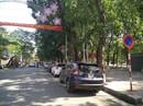 """Hải Phòng """"quyết"""" cấm đỗ ô tô ở trung tâm thành phố"""