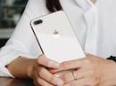 Khách hàng đặt cọc mua iPhone 8 sụt giảm mạnh