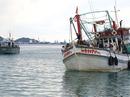 Đưa 3 người Việt bị New Zealand tạm giữ về Việt Nam
